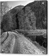 Shady Trail Tonemapped Acrylic Print