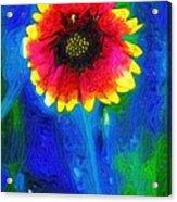 Shaggy Moon For A Shaggy Flower Acrylic Print