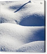 Shapes Of Winter Acrylic Print