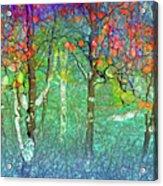 Sharing Colours And Dreams Acrylic Print