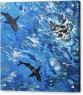 Sharks#3 Acrylic Print