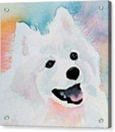 Shasta, A Prince Of A Dog Acrylic Print