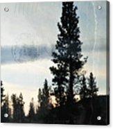 Shasta Trinity National Forest Sunrise Portrait Acrylic Print