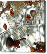 Shattered Acrylic Print