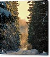 Shawnigan Winter Road Acrylic Print