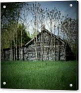 Shed And Trees Acrylic Print by Michael L Kimble
