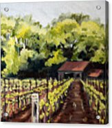 Shed In A Vineyard Acrylic Print by Sarah Lynch