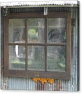 Shed Window Acrylic Print