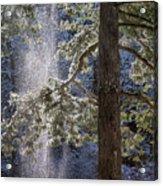 Shedding Snow Acrylic Print