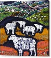 Sheep At Midnight Acrylic Print by Carol  Law Conklin