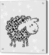 Sheep Black Star Acrylic Print