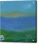 Sheep In The Meadow Acrylic Print