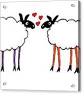 Sheep Love Acrylic Print