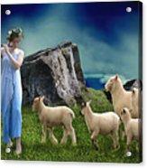 Sheep Whisperer Acrylic Print
