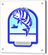 Sheepshead Fish Jumping Fishing Boat Crest Retro Acrylic Print