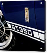 Shelby Mustang G T 350 Cobra Acrylic Print