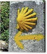 Shell And Arrow Marker, El Camino, Spain Acrylic Print