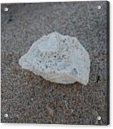 Shell And Sand Acrylic Print
