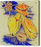Shell Treasures Acrylic Print
