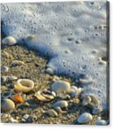 Shells And Seafoam Acrylic Print