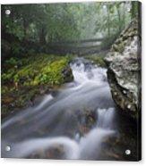 Shenandoah Mountain Stream Acrylic Print