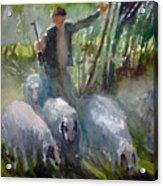 Shepherd... Acrylic Print