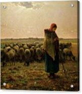 Shepherdess With Her Flock Acrylic Print by Jean Francois Millet