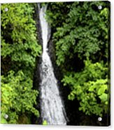 Shepperd's Dell Falls, Oregon Acrylic Print