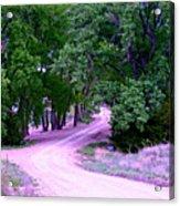 Sheridan Road Acrylic Print
