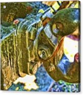 Sherman Acrylic Print