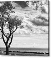 Sherwood Island Acrylic Print