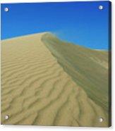 Shifting Dune Acrylic Print