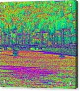 Shilshole Bay Marina Acrylic Print