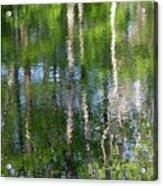 Shimmering Reflection Acrylic Print