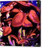 Shimmering Shrooms Acrylic Print