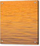 Shimmering Surface Acrylic Print