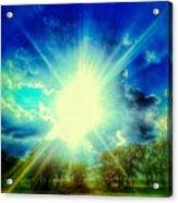 Shining Bright Acrylic Print