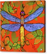 Shining Dragonfly Acrylic Print by Mary Ogle