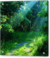 Shining Light Acrylic Print