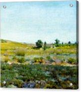 Shinnecock Hills, Summer - William Merritt Chase Acrylic Print