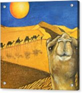 Ship Of The Desert Acrylic Print