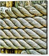 Ship Rope Anchored Acrylic Print