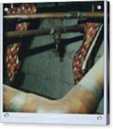 Shoe Study 1 Acrylic Print