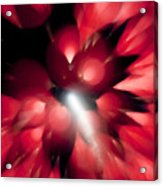 Shooting Star In Red K861 Acrylic Print