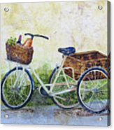 Shopping Day In Lucca Italy Acrylic Print