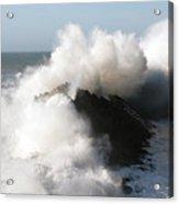 Shore Acres Wave 2 Acrylic Print