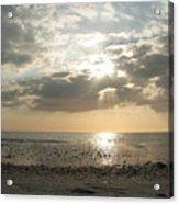 Shore Rays Acrylic Print