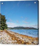 Shoreline On The Kyles Of Bute Acrylic Print
