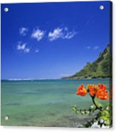 Shorline With Flower Acrylic Print