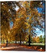 Shrewsbury Autmn Park Acrylic Print